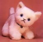 Cuddly Kitten 11 inch