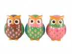 Large Dotty Owl Money Box