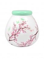 Blossom Pot of Dreams