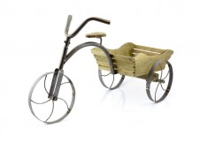 Country Garden Tricycle Planter by Leonardo