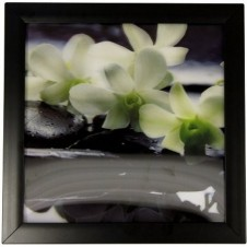 Iconic 3D  Spa Orchid