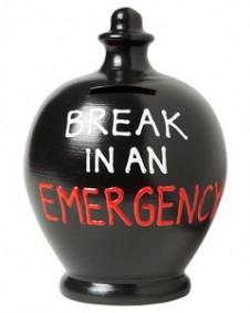 Terramundi Break In Emergency Money Pot