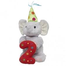 2nd Birthday Elliot 7 inch for Boys and Girls