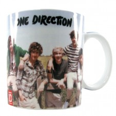 One Direction Fence Mug