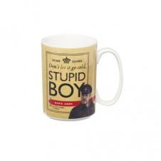 Stupid Boy Mug