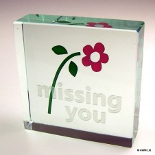 Message Blocks   Missing You