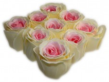 Bath Confetti -9 Roses Box - Pink and Cream