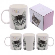 Fun New Bone China Mug - MEOW Cute Kitten