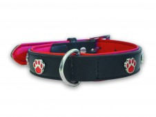 Paws Charm Leather Collar Lead